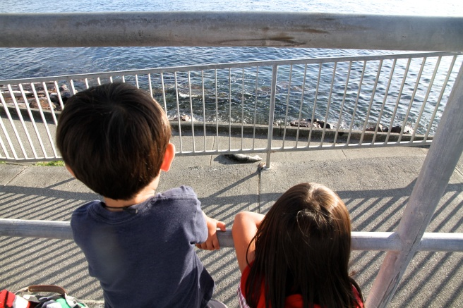 Shen and Meilee observe a baby harbor seal as it rests.