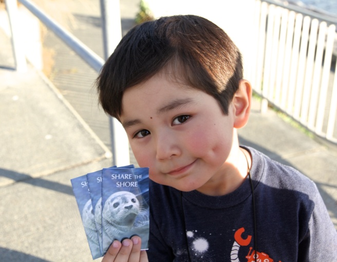 Volunteers are given mini pamphlets about harbor seals to share with the public.